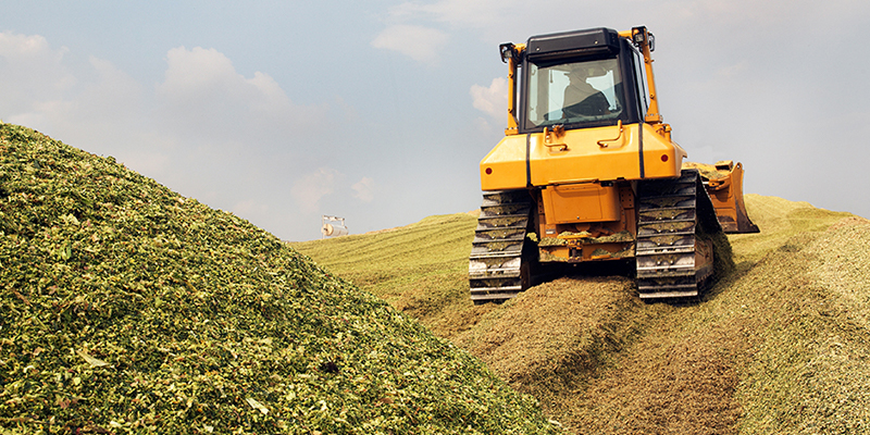 Aufbereitung von Maissilage für eine Biogasanlage